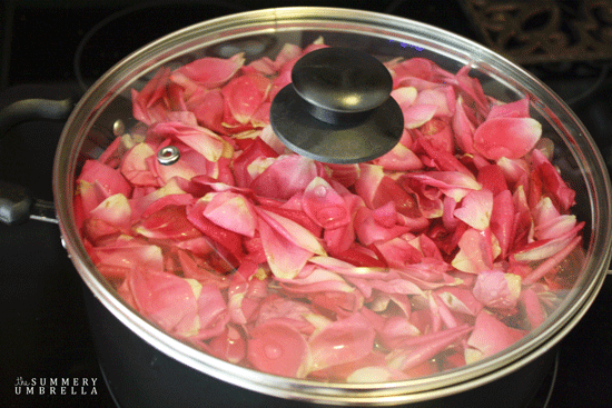 how-to-make-rose-water-6