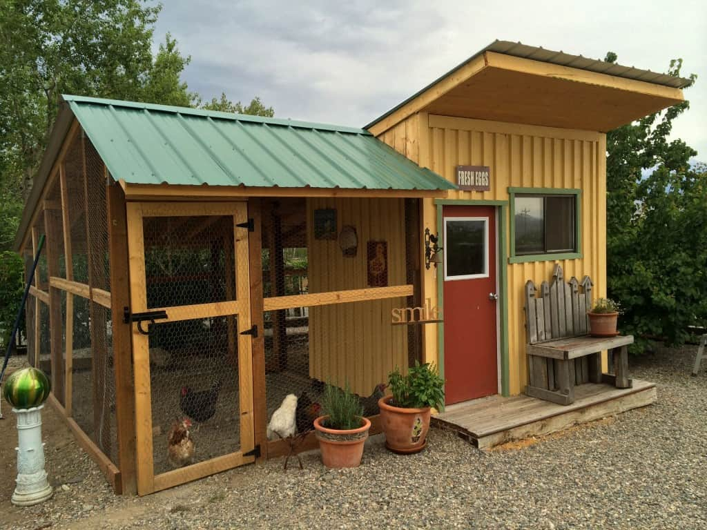 Are you looking for beautiful inspiration for your own chicken coop? Check out my top 10 Pretty and Functional Chicken Coops right now!